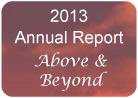 2013 Annual Report - Evolution