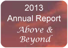 2013 Annual Report - Evolution